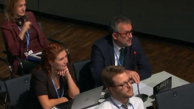 Müsteşar Yardımcısı Birpınar İklim Değişikliği Taraflar Konferansı'nda Türkiye'nin Taleplerini Dile Getirdi