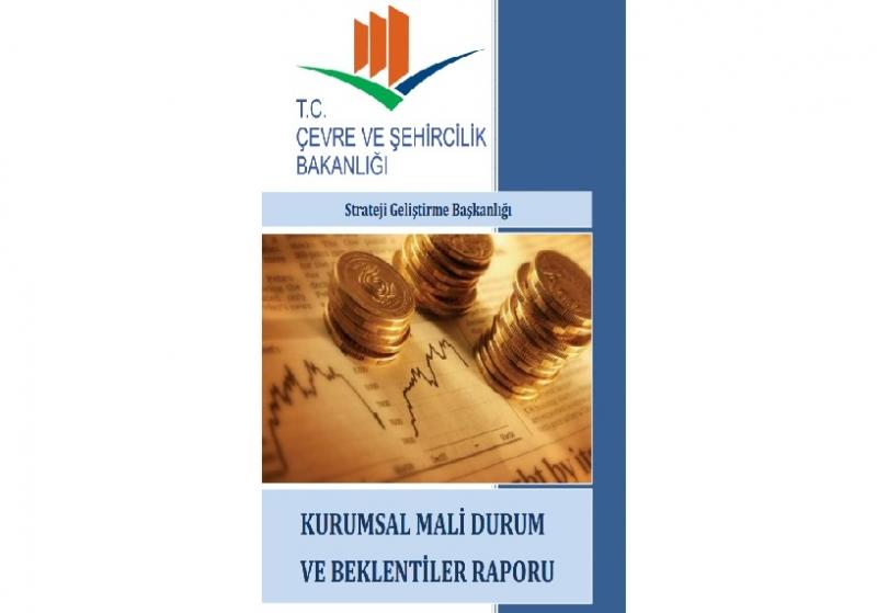 2013 Yılı Kurumsal Mali Durum ve Beklentiler Raporu