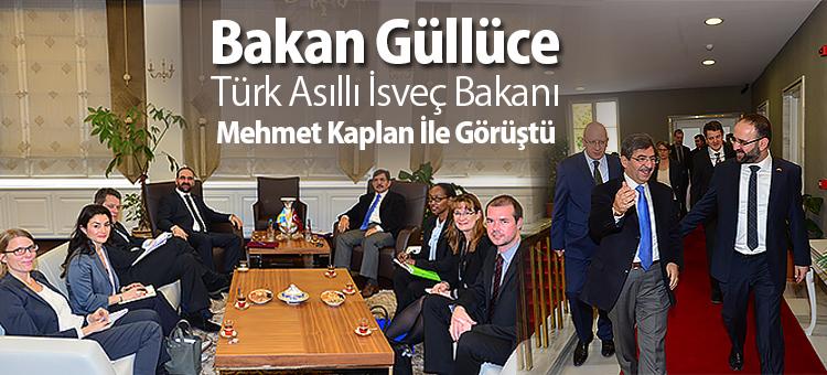 Bakan Güllüce Türk Asıllı İsveç Bakanı Mehmet Kaplan İle Görüştü