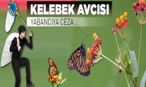 Kelebek Avcısı Yabancıya Ceza