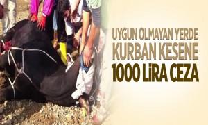 Uygun olmayan yerde kurban kesene 1000 TL ceza