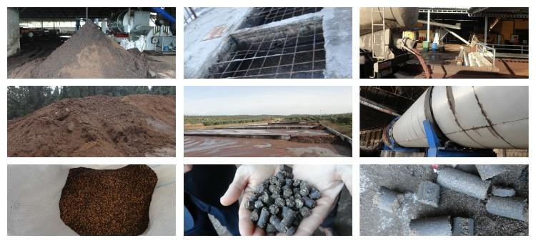 Zeytinyağı Üretim Prosesleri