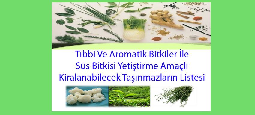Tıbbi Ve Aromatik Bitkiler İle Süs Bitkisi Yetiştirme Amaçlı Kiralanabilecek Taşınmazların listesi