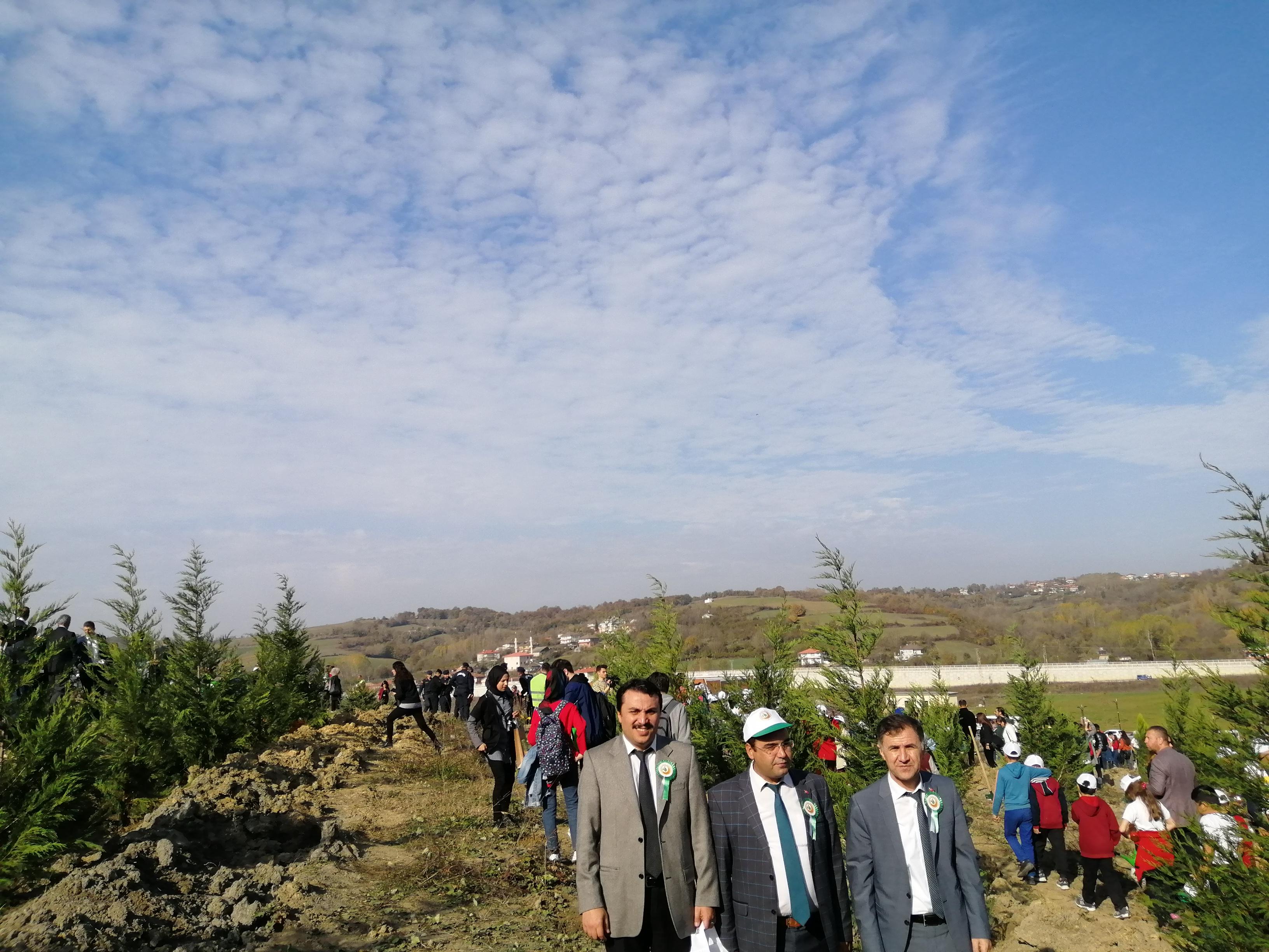 11 Milyon Ağaç, Bugün Fidan Yarın Nefes
