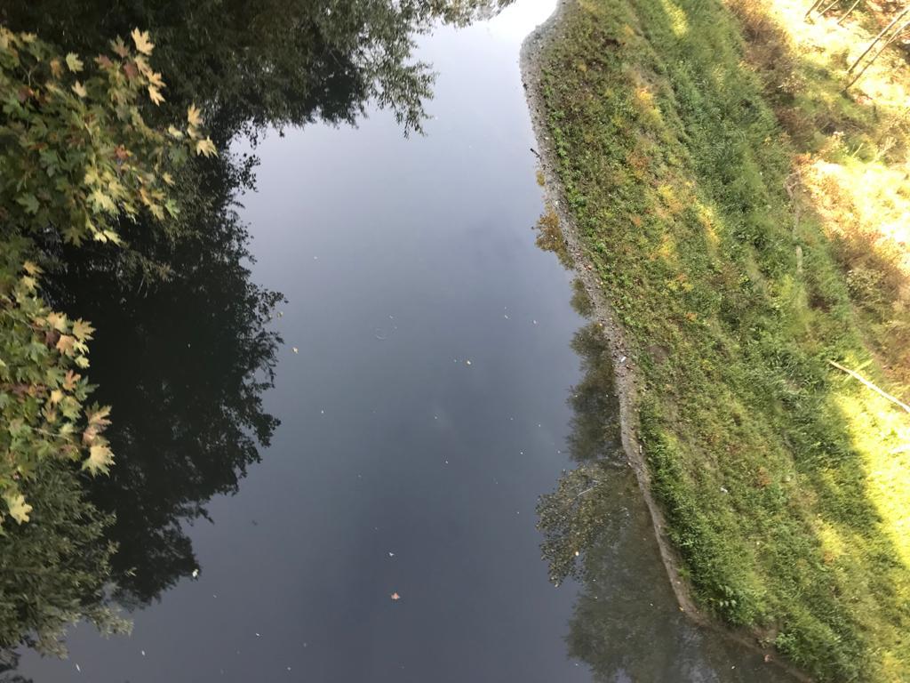 Bartın Irmağı Kemerköprü Mevkii İnceleme