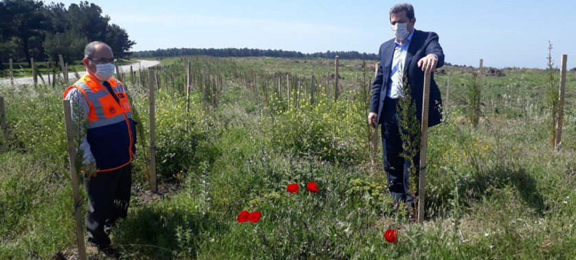 Vali Orhan TAVLI ve İl Müdürümüz Ömer BOLAT, Merkez Kemel Köyü Fidan Dikim Alanında İncelemelerde Bulundu