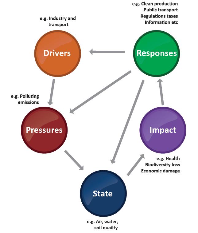 Schematic demonstration of DPSIR framework