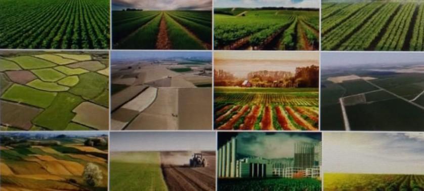 Tarım ve Hayvancılık Amacıyla Kullanılan Taşınmazların Ecrimisillerinin Ödeme Süreleri İle Hak Sahiplerinin Satış Bedelleri Ertelendi