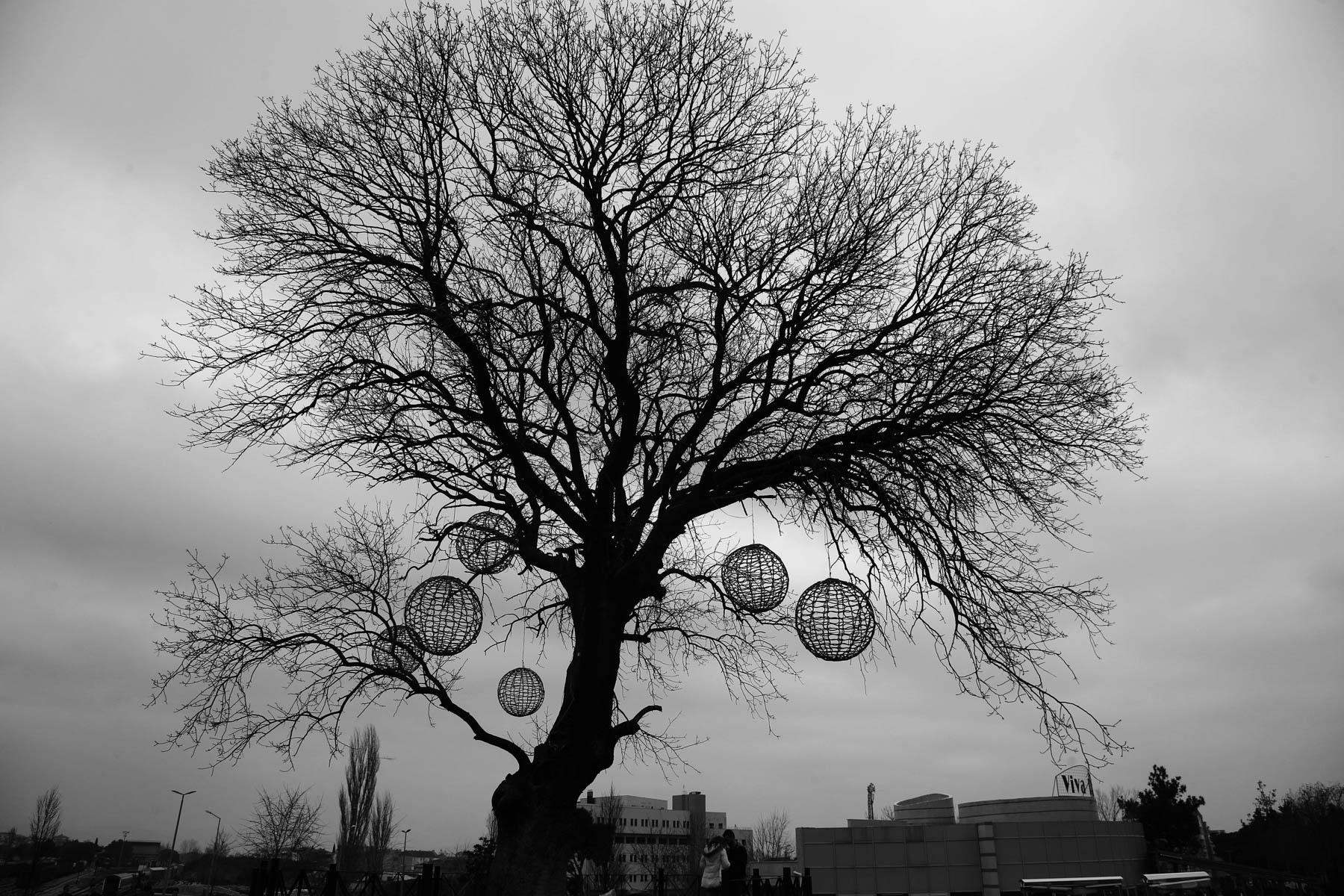 """İZMİR ÇEVRE VE ŞEHİRCİLİK İL MÜDÜRLÜĞÜ TARAFINDAN DÜZENLENEN """"YAŞANABİLİR ÇEVRE VE SIFIR ATIK"""" KONULU FOTOĞRAF YARIŞMASI SONUÇLARI"""