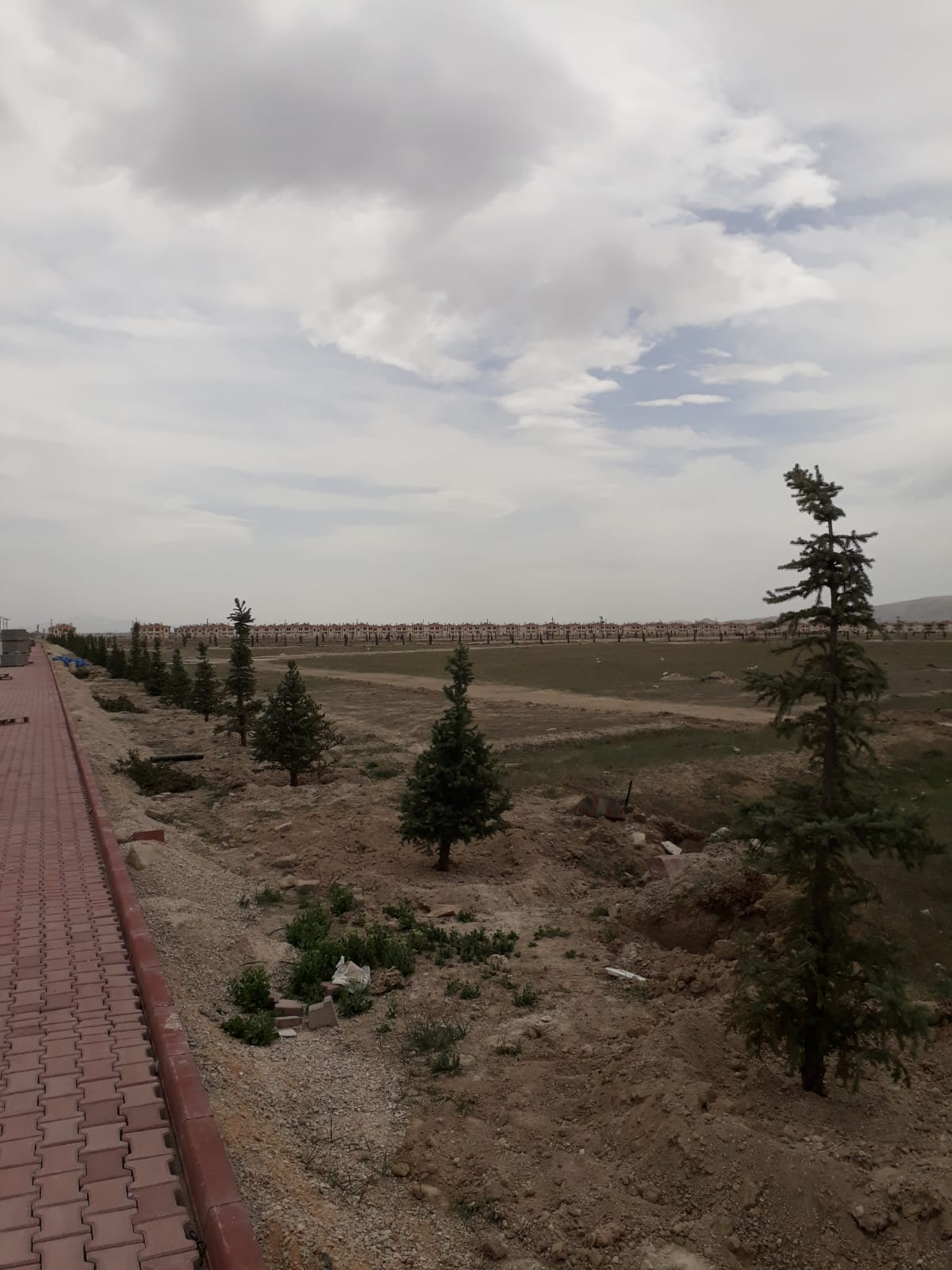 Konya Bozkır Barajı İskan Konutlarında Ağaçlandırma Çalışmaları