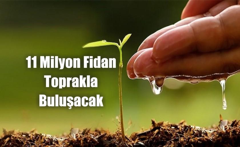 11 milyon fidan toprakla buluşacak.