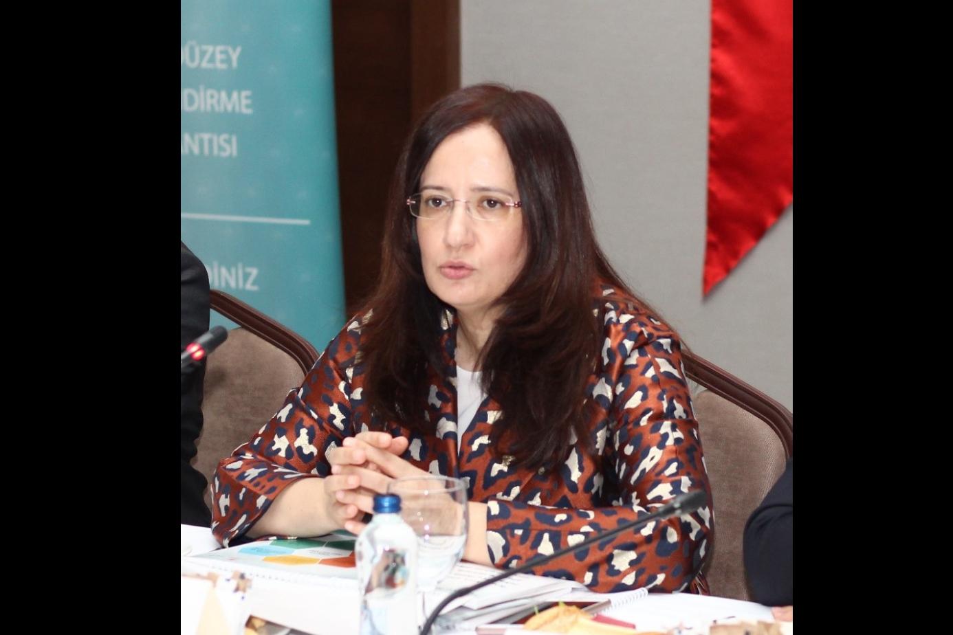 Türkiye Mekânsal Strateji Planı 2. Üst Düzey Yönlendirme Toplantısında, Planın Vizyon, Öncelikler ve…