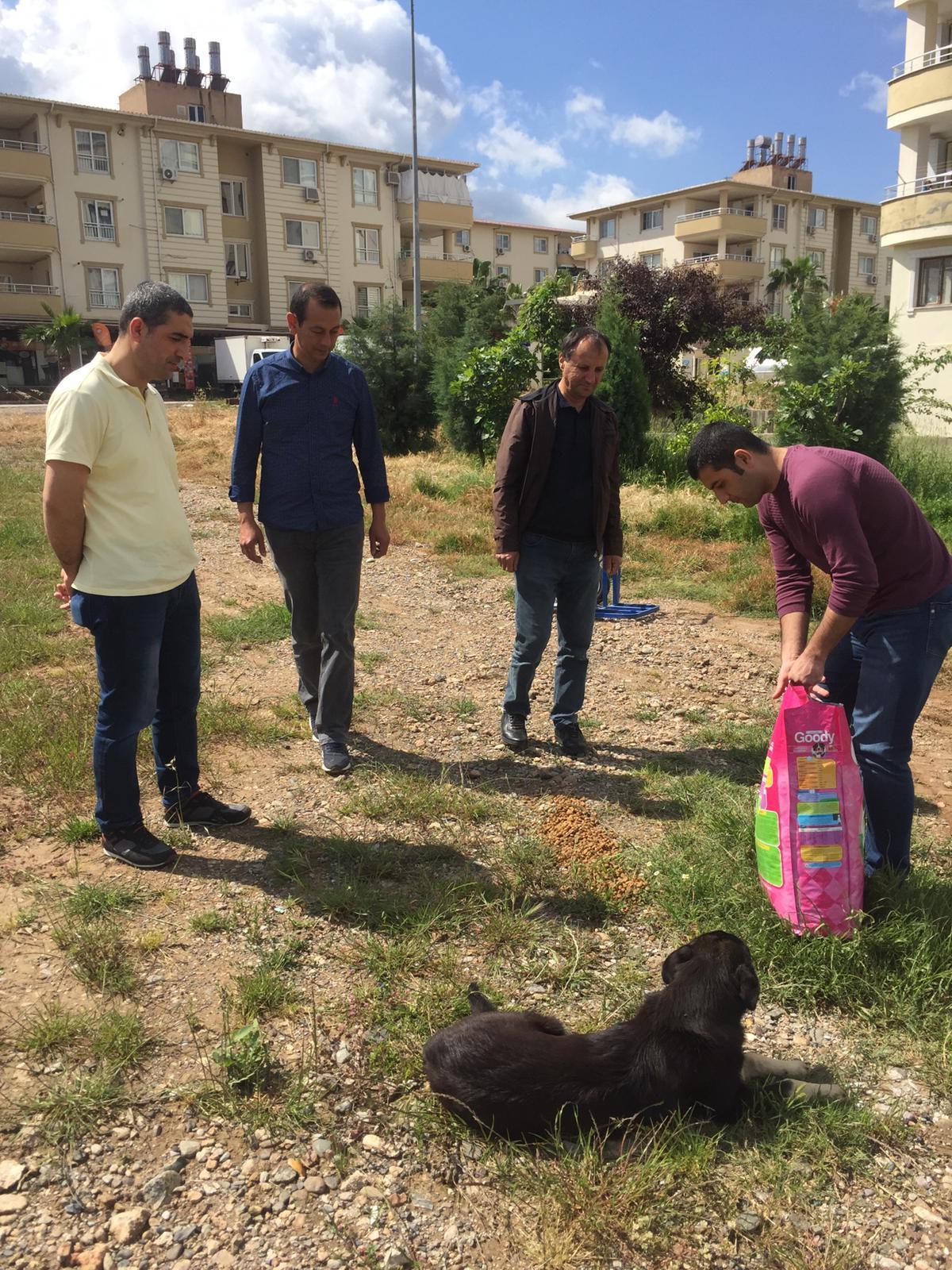 Sokak Hayvanları Aç Kalmasın Kapsamında İl Müdürlüğümüzce Yapılan Faaliyetler.
