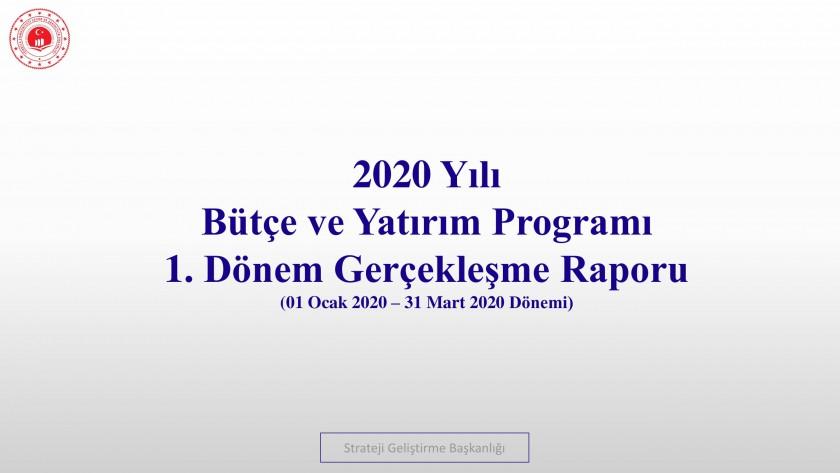 1. Üç Aylık Bütçe Gerçekleşme Raporu (2020)
