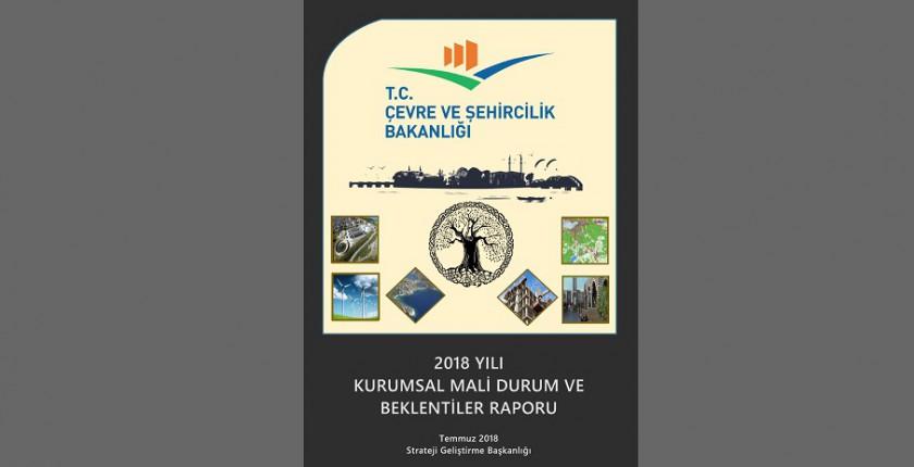 2018 Yılı Kurumsal Mali Durum ve Beklentiler Raporu