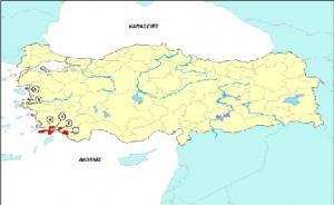 Türkiye'nin Deniz ve Kıyı Koruma Alanları Sisteminin Güçlendirilmesi Projesi