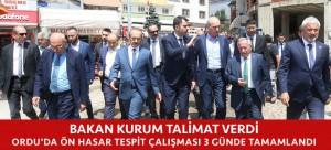 BAKAN KURUM TALİMAT VERDİ, ORDU'DAKİ TESPİT ÇALIŞMASI 3 GÜNDE TAMAMLANDI
