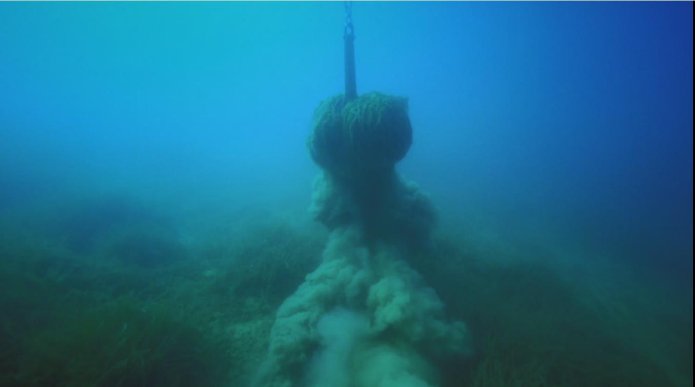 Deniz Çayırları - Yaşamın Geleceğine Çapa Atmayalım.