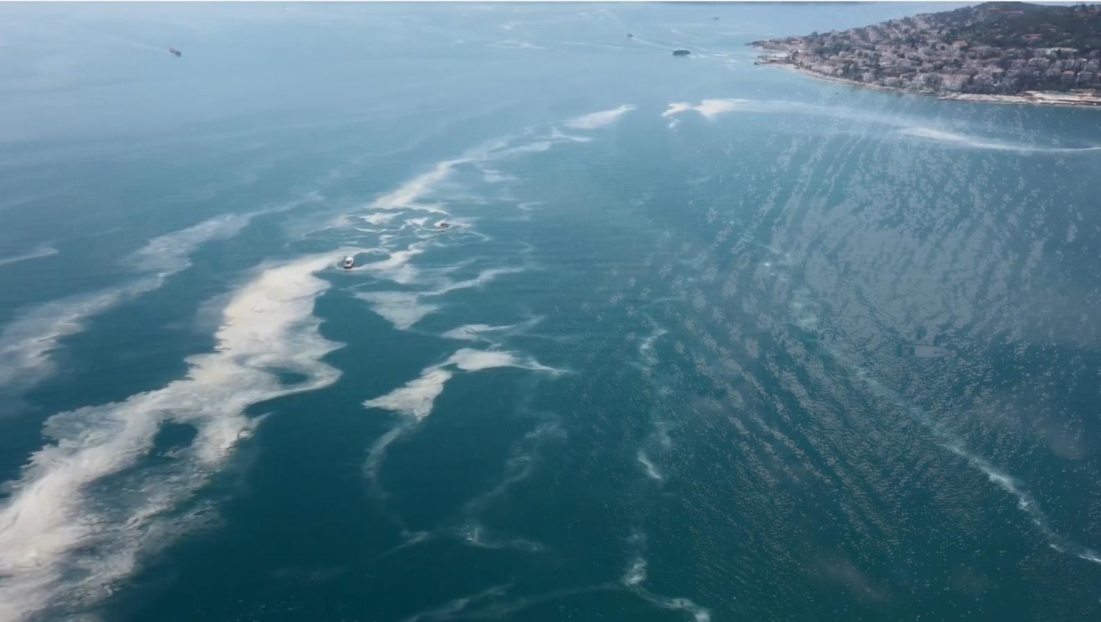 Deniz Salyası (Müsilaj) Temizliği